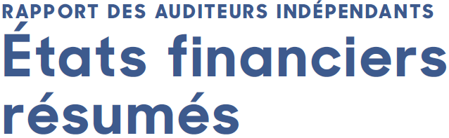 Summary of Annual Report Financial Statements French