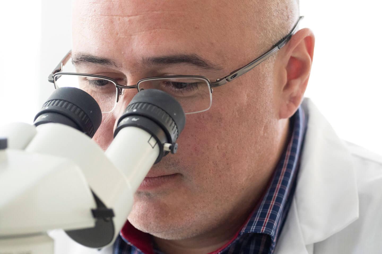 Daniel Coutu scrute à l'aide d'un microscope.